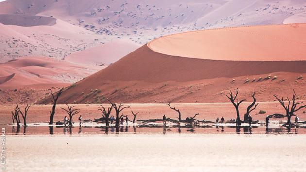 Couleurs et paysages de Namibie, à découvrir en trek