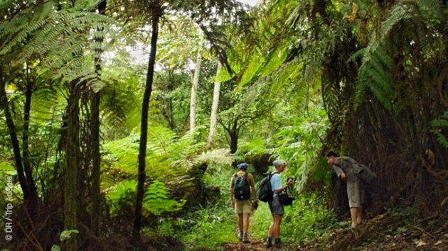 Vacances randonnées et trek au Cameroun