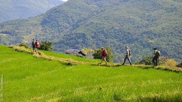 vacances avec de la randonnée au Sri Lanka