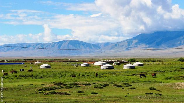 Découverte en Mongolie