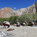 Commentaire de Steve sur son trekking au Ladakh avec Dorjey et Trip Adékua