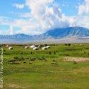 Avis séjour trekking en Mongolie