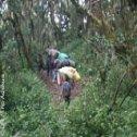 Avis séjour randonnée trekking en Tanzanie