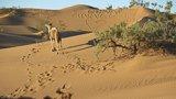 Avis séjour randonnée trekking au Maroc