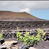 Commentaire de Bruno sur son séjour rando trek à Lanzarote avec Julie et Trip Adekua