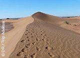 mon trek dans le désert du maroc avec Trek Adekua