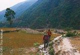 Avis séjour trekking au Népal