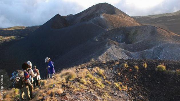 Trekking entre amis à l'assaut du Mont Cameroun