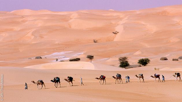 Séjour trekking unique à la découverte de la Mauritanie