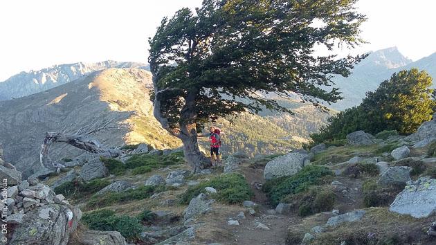 Un séjour trek sur le GR20 avec bivouac et gîte d'étape en Corse