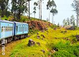 Jours 12 à 14 : Fort de Galle, campagne sri-lankaise et Colombo au programme - voyages adékua