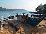 Jours 9 à 12 : La région Sud, d'Udawalawe à Mirissa - voyages adékua