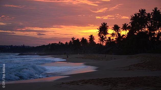 Le Sud du Sri Lanka et ses plages : un éblouissement entre deux randonnées pédestres