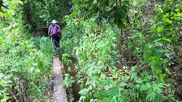 Des paysages variés vous attendent au Sri Lanka pendant ce séjour trek