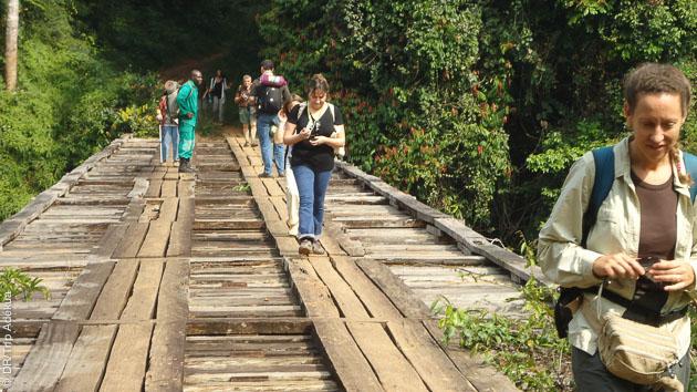 Un itinéraire trekking au Cameroun qui vous mène sur les flancs du Mont Cameroun