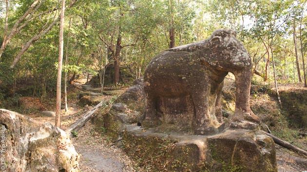 Dans le Mondolkiri, rencontre avec les éléphants, lors de votre trek au Cambodge