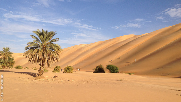 Erg et Reg au programme de ce circuit trek en Mauritanie