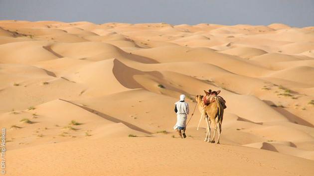 Rencontre avec des nomades et caravanes chamelières, pendant ce trek en Mauritanie