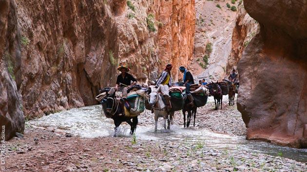Un circuit de randonnée avec une caravane de muletiers pour vous accompagner sur les sentiers du Haut Atlas marocain