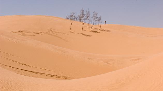 Profitez des paysages exceptionnels des dunes en Tunisie