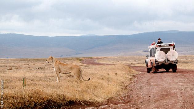 Séjour trekking et safari photo dans la vallée du Rift, avec le parc du lac Manyara et le cratère Ngorongoro au programme