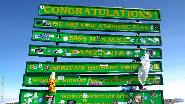 Un trek à l'assaut du Kilimanjaro par la voie Machame