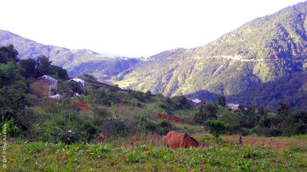 Aux pieds de l'Himalaya, découvrez les paysages superbes de la région du Kumaon lors de vos randonnées