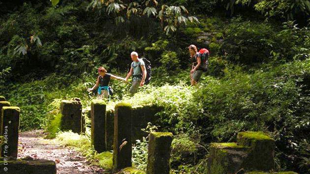 Séjour trekking entre culture et nature dans la vallée du Kumaon au Nord de l'Inde