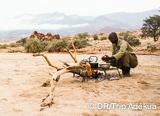 Jours 2 à 3: trek au cœur du Damaraland - voyages adékua