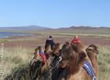 Jours 8 à 12: retour dans les plaines de Mogolie - voyages adékua