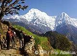 Jours 1 à 4 : arrivée à Katmandou et premier trek au Népal - voyages adékua