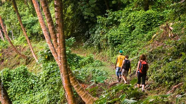 Randonnées découverte des paysages variés de Dominique