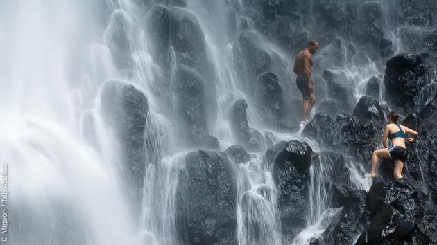 Des baignades en cascades, ou sur les plages magnifiques de Dominique pour observer les cétacés