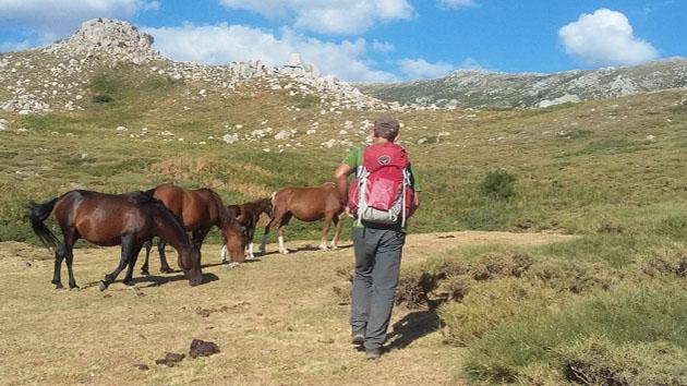 Venez marcher sur les plus beaux sentiers de Corse du Sud