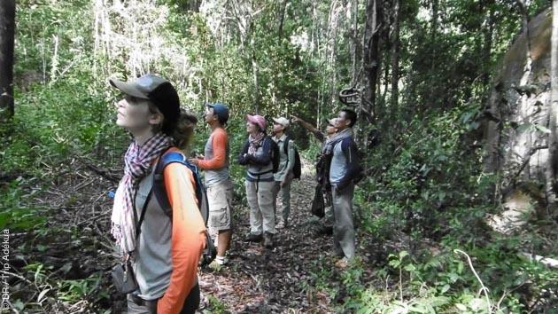 Magnifique randonnée découverte dans la forêt des Cardamomes au Cambodge