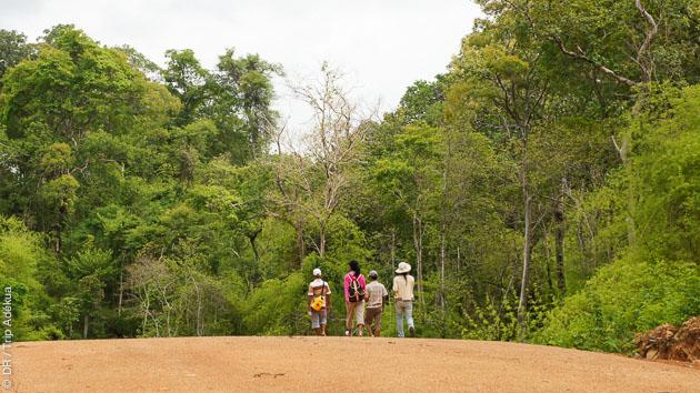 Treks et randonnées accompagnés d'un guide sur les plus beaux sentiers du Cambodge