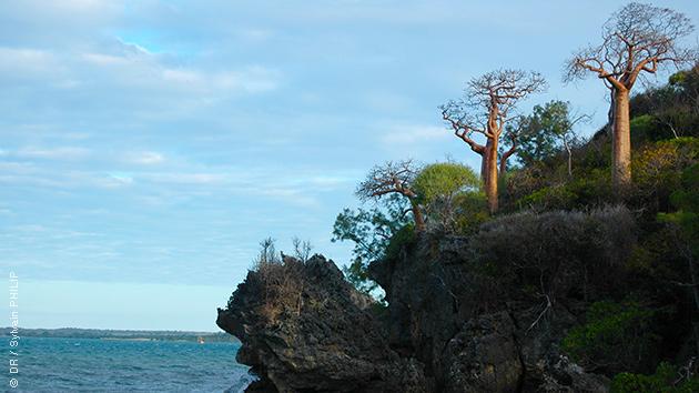 Madagascar vous dévoile ses trésors lors de ce séjour trekking