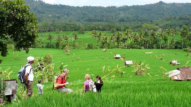 Trekking et randonnées entre volcans et rizières d'Indonésie