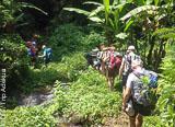 Jours 1 à 6: de Bali à Lombok à la découverte des volcans d'Indonésie - voyages adékua