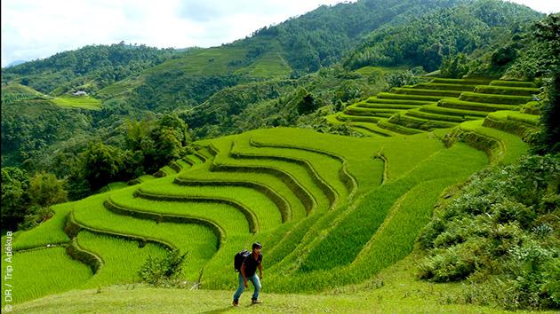 Rizières en terrasse, fermes sur pilotis, et rencontres de populations locales : un circuit trek de toute beauté au Vietnam