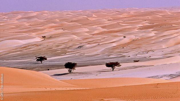Les dunes de sable de l'Adrar en Mauritanie