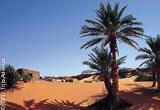 Jours 1 à 12 : caravane extraordinaire dans le désert de Mauritanie - voyages adékua
