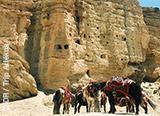 Jours 1 à 5: direction le Royaume du Mustang au Népal - voyages adékua