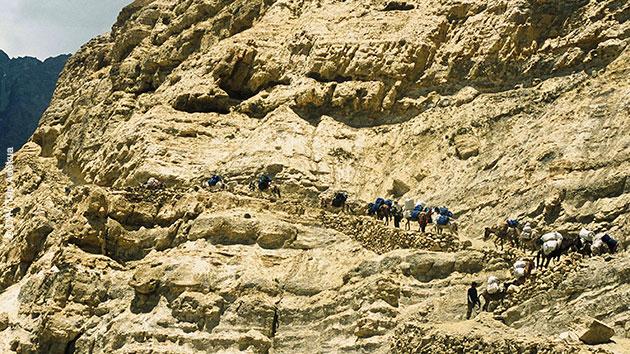 Des paysages aux couleurs extraordinaires, des sentiers changeants : un trek népalais inoubliable !