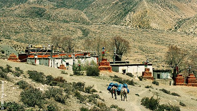 Villages troglodytes, cité fortifiée... vos randonnées vous mènent au coeur du Royaume du Mustang au Népal