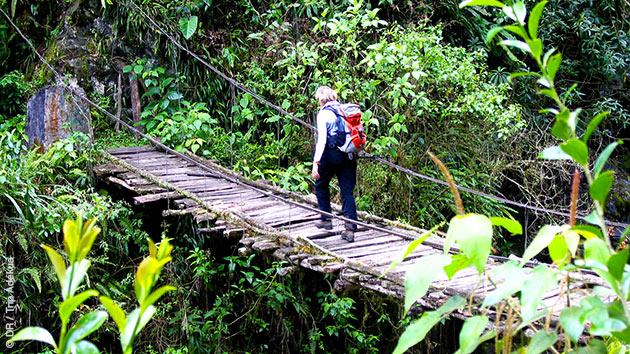 Votre itinéraire de randonnée vous mènera sur les sentiers de montage et au coeur des forêts boliviennes