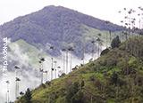 Jours 1 à 4 : arrivée à Bogota et premières journées de trekking en Colombie - voyages adékua