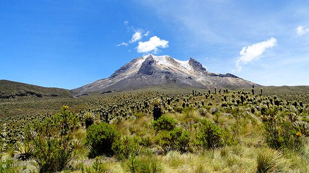 Des trek avec en toile de fond le Nevado Tolima, que vous grimperez peut être, en Colombie