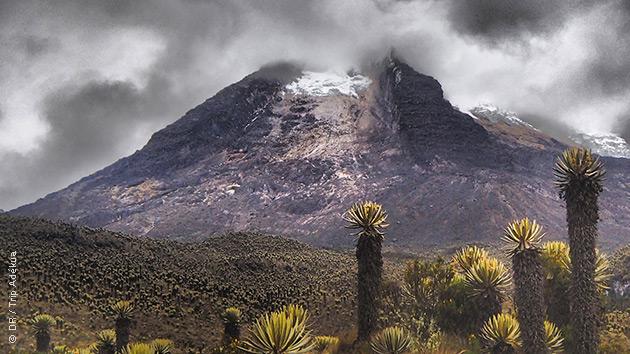 Les paysages majestueux de Colombie à découvrir lors de vos randonnées pédestres dans le Parc National de Los Nevados