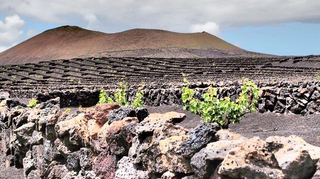Volcans, plages, lagune... des paysages de rêves pour ce séjour trekking à Lanzarote
